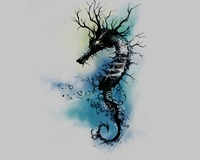Silently Seahorse