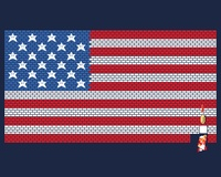 USA Mario Bricks Flag